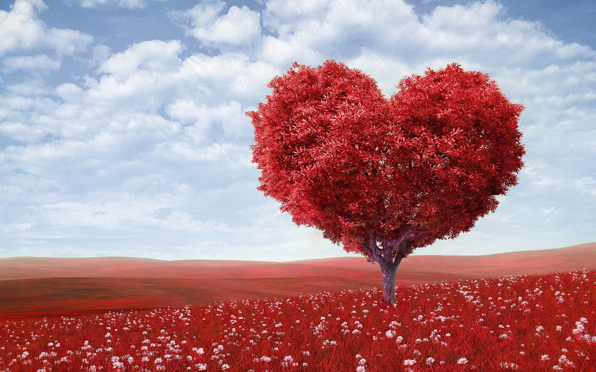 4 textes sur l'Amour à lire lors d'une cérémonie laïque